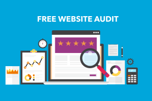 free-website-audit